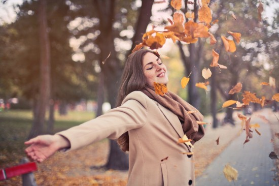 Fall - Stress Free